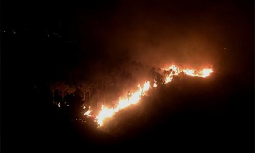 Lâm Đồng: Vụ cháy lớn trên núi Đại Bình đang ngày càng lan rộng