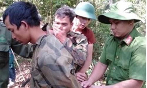 Mặc đồng bọn bị bắt giữ, lâm tặc tiếp tục khai thác gỗ trái phép
